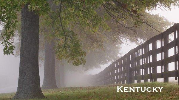 Kentucky Board of Nursing Attorney